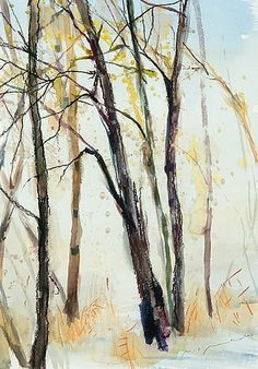 NANDOR MIKOLA (1911-2006) Birches Nordic Art, Scandinavian Art, Photo Tree, Watercolor Landscape, Finland, Birches, Watercolours, Aloe Vera, Lakes