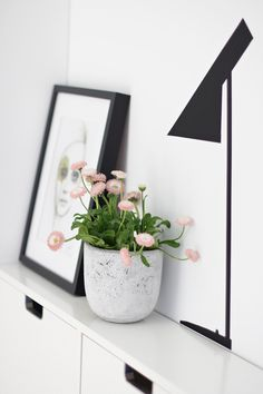 Hvad er det mindste du kan gøre? En plante i dit feng-shui-område for Familie & Helbred er en nem, enkel og hurtig måde at skabe god energi på!