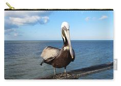 Pelican Carry-all Pouch featuring the photograph Sitting On The Pier by Cynthia Guinn