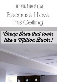 Because I Love This Ceiling! - The Twin Cedars