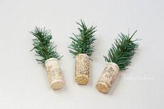 Mini Cork Trees