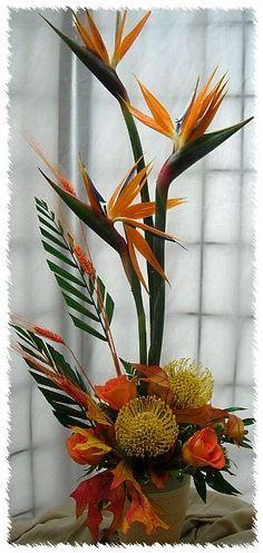 Ideas Bird Of Paradise Flower Arrangement Ikebana Strange Flowers, Exotic Flowers, Rare Flowers, Tropical Flowers, Beautiful Flowers, Ikebana, Tropical Floral Arrangements, Large Flower Arrangements, Birds Of Paradise Flower