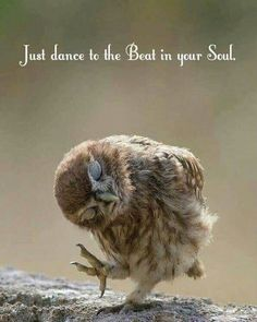 Whatever the dance may be and with whomever the dance will be wth - love the life you have been given. Whatever the dance may be and with whomever the dance will be wth - love the life you have been given. Great Quotes, Me Quotes, Motivational Quotes, Inspirational Quotes, Lost Soul Quotes, Qoutes, Funny Quotes, Funny Memes, Cartoon Memes