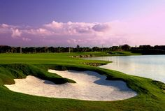 #Golf Hard Rock Golf Club Cana Bay