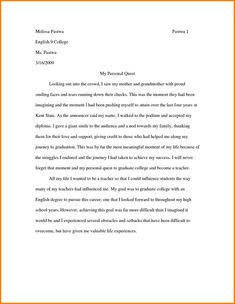 Argumentative Essay Examples With Fighting Chance Writing Sample
