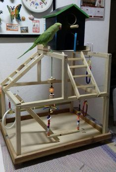 An aviary is a shed or cage like construction designed as a living space for wild or domesticated fowl. Given that birds are used to flying free in their natural habitat it is important to recreate as best we can this kind of environm Parrot Stand, Bird Stand, Cockatiel Toys, Budgies, Parrots, Pet Bird Cage, Bird Cages, Bird Aviary, Bird Perch