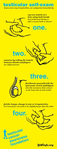 Testicular Cancer Awareness Foundation | Educational Facts & How to Help - Self Exam - How to