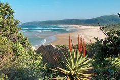 The Best Little Towns In The Western Cape 2018 – The Inside Guide Knysna, South Afrika, Namibia, Out Of Africa, Africa Travel, Beach Trip, Beautiful Beaches, Scenery, Places To Visit