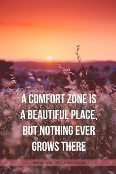 a comfort zone is a beautiful place but nothing grows there. TOP 10 Quotes to Inspire action! Check out www.positivitysparkles.com for more #inspirationalquotes!