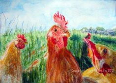 ♥ ORIGINAL Print Watercolour Ink 'Inquisitive Hens' Chickens Limited morena art | eBay