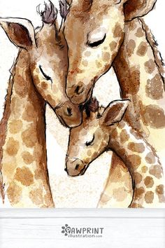 Family of Giraffes Art Print - This adorable print features a family of three beautiful giraffes. Giraffe Decor, Giraffe Art, Giraffe Nursery, Giraffe Drawing, Giraffe Painting, Animal Sketches, Animal Drawings, Giraffe Pictures, Giraffe Family