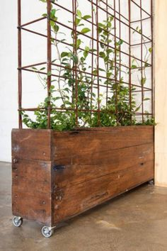 Maybe a steel cage at the top?  15 ways to divide a room: Planter from Bangs Boutique in Melbourne