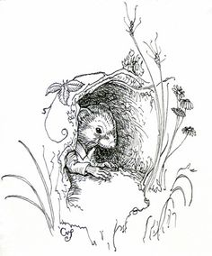 Ratty from Wind in the Willows - Charles van Sandwyk