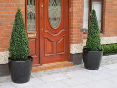 Garden Pots and Planters Garden Pots, Garden Landscaping, Planter Pots, Landscapes, Decor, Front Yard Landscaping, Paisajes, Garden Planters, Scenery