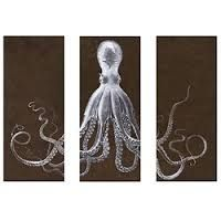 squid octopus copperplate illustration - Google Search