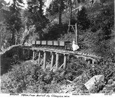 Tramway at the Bohemia Mining Dist.