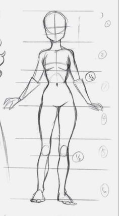 - Whole body proportions! The lines go by inches. Hope this helps you guys! I know it helps me. I'm trying to get better at anime and manga. Art Drawings Sketches Simple, Pencil Art Drawings, Drawing Lips, Body Sketches, Drawing Drawing, Character Sketches, Drawing Reference Poses, Drawing Poses, Hand Reference