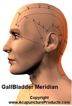 Acupuncture Gall Bladder Meridian