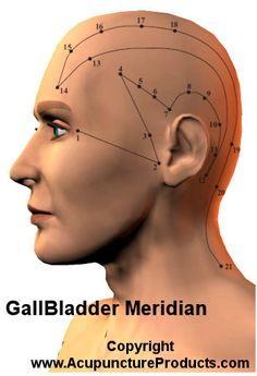 Acupuncture Gall Bladder Meridian