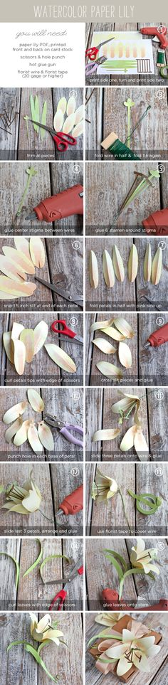 DIY Watercolor Paper Lily