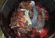 Contents found in a whales stomach. Too much plastic in our oceans!!!