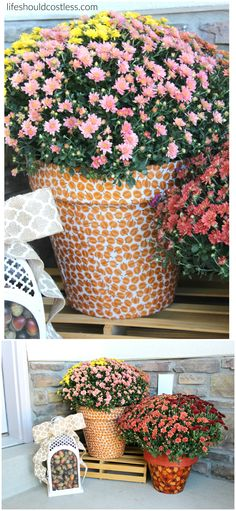 Autumn Print Potted Mums. Perfect decor for a fun and festive fall porch. See more popular pins at http://lifeshouldcostless.com.