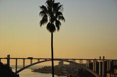 Ponte da Arrabida. vista dos Jardins do Palácio de Cristal. PORTO, Portugal