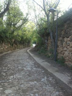 Camino. http://www.ebroverde.es/bajo-martin/