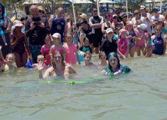Real Life Mermaids, Mermaid Mermaid, Perth, Amelia, Summer Time, Waves, Swimming, Magazine, Swim