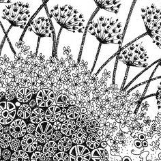 Love the Dandelions!  Fiona Willis (doodling artwork)