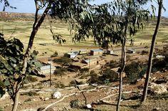 0005-Eritrea-2002-Ruef.jpg (850×562)