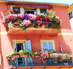 Blooming balconies in Nice France Haute Provence, Provence France, Antibes, Corsica, Small Goat, Vine Leaves, One Word Art, Nice France, French Riviera