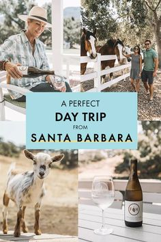 No Santa Barbara itinerary is complete without a few wine-tasting escapades to all its picture-perfect wineries. First stop on the list: Folded Hills! Here are all my how-tos to get the most out of your time at my favorite Santa Barbara winery! Usa Travel Guide, Travel Usa, Travel Tips, Travel Destinations, Travel Guides, Beach Travel, Travel Goals, Budget Travel, Santa Barbara Wineries