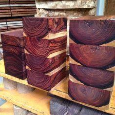 Tropicais madeiras exóticas: cocobolo