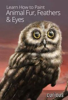 How to Paint Animal Fur, Feathers & Eyes