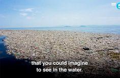 Un'isola di plastica grande molti chilometri quadrati filmata vicino ai Caraibi