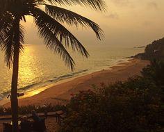 i-escape blog / i-escape's year in travel / Kerala India