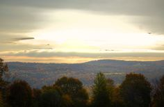 The color is hanging on in Endicott, NY 10/20/2013