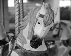 """Carousel horse at carnival photograph print ** Free shipping!** Limited time only!. 13""""x19""""; black and white; semi-glossy; print only."""