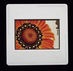 Painted by Charlotte Caroline Sowerby (1820-1865) is a hybrid created in the mid 1880's.  It was printed as one of a set of ten, 1st class stamps issued in 1997 by The Royal Mail.  This fabulous botanical painting, with a bright orange, daisy like flower would make a stunning, wearable piece of art for any flower lover.  The unused stamp is encased in a vintage slide mount, with glass, making this a unique piece of jewellery.   A nickel plated brooch pin with safety catch is used as a…