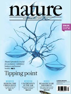 Nature, Volume 503 Number 7474. Mutations in SHANK3, the gene encoding the SHANK3 synaptic scaffolding protein, are associated with autism, intellectual disability and schizophrenia, but the effect of SHANK3 overexpression is much less clear. (Cover: Wei-Hisang Huang) Nature Publishing Group.