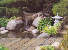 I want to do a Japanese themed garden in our private courtyard