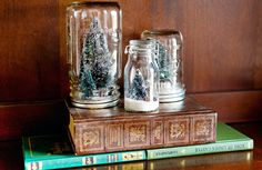 Seasonal snow globes by photographer Arielle Royer.