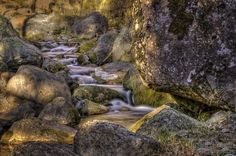 light and shadow in the stream by dlddanilo