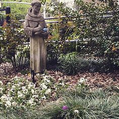 St. Francis of Assisi, Easter Egg Hunt 2015 @ Trinity Episcopal Church Baton Rouge