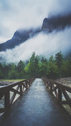 Forest River Crossing Mountain Fog iPhone 6+ HD Wallpaper