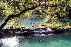 pictures of rivers in venezuela - Google Search