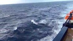 Mein Schiff 4 Kanaren 2015