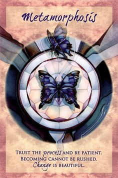 """Metamorphosis"" Magical Times Empowerment Cards par Jody Bergsma"