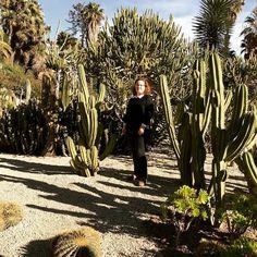 Nuevo vídeo ! Conocéis este jardín lleno de cactus de Barcelona ?  Es ideal para pasear en pareja o con la familia un domingo  En el vídeo de esta semana os lo enseño. Espero que os guste ! Link directo en la bio  #garden #cactus #Barcelona #bcnigers #IG_CATALONIA #video #youtube #ig_nature #instagood
